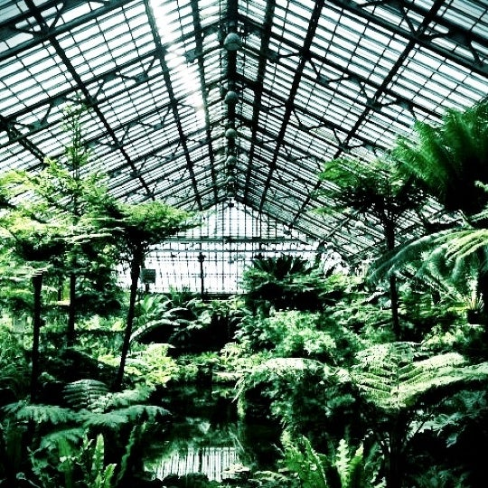 Photo taken at Garfield Park Conservatory by Crystal C. on 7/20/2012