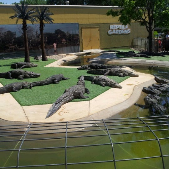 Photo taken at Reptile Gardens by Becca M. on 6/28/2012