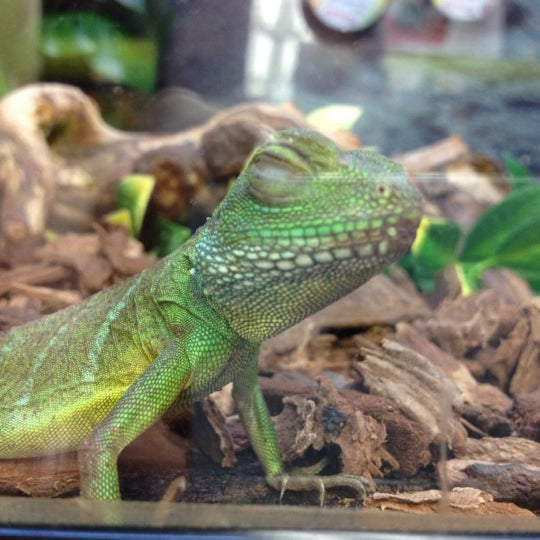 Photo Taken At Petco By Jolene L On 6 7 2012