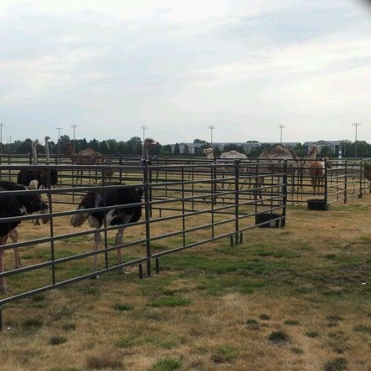 Photo taken at Prairie Meadows by Jenn N. on 7/22/2012