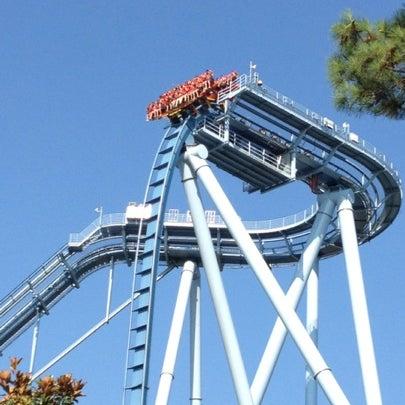 Griffon Busch Gardens Lunapark Gezileri E Lence