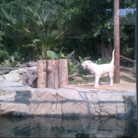 Photo taken at Xiang Jiang Safari Park, Guangzhou by Nourah A. on 8/27/2012