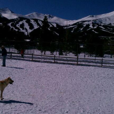รูปภาพถ่ายที่ Carter Dog Park โดย Jeff W. เมื่อ 2/18/2012