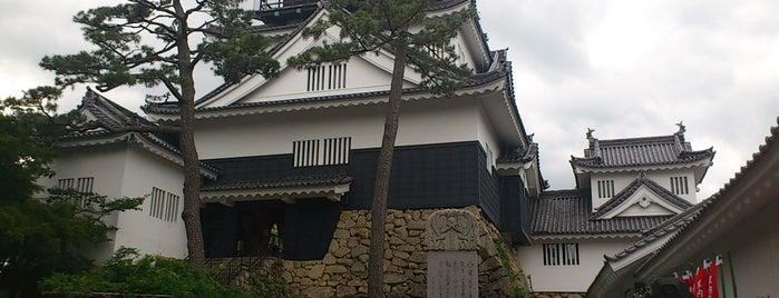 Okazaki Castle is one of グレート家康公「葵」武将隊.