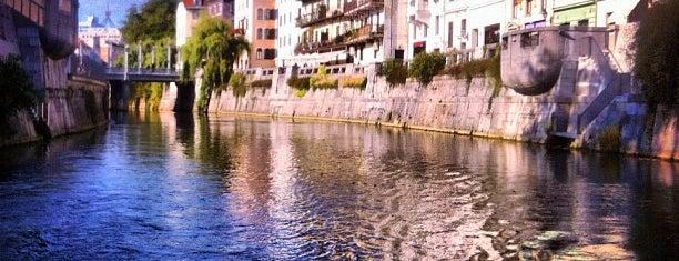 Ljubljanica is one of Slovenia 2013.