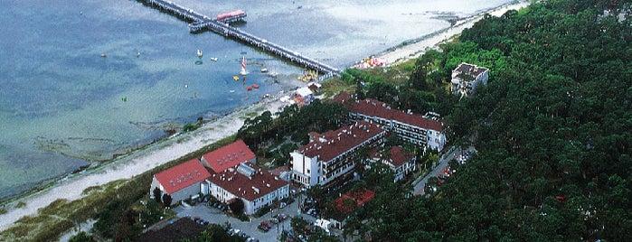 Hotel Neptun is one of Szkolenia z Inspiros.