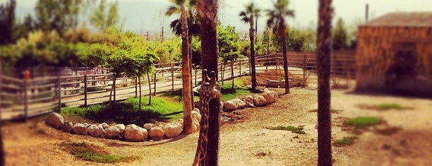 Terra Natura is one of Murcia, que hermosa eres!.