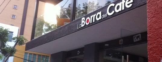 La Borra del Café is one of The 15 Best Places for Espresso in Guadalajara.