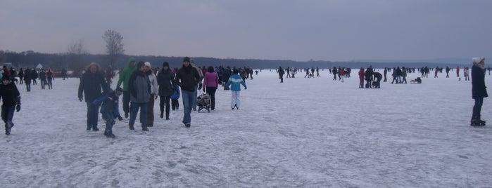 Eisfest Steinhude #Eisfest is one of Was man in Steinhude gesehen haben muss.