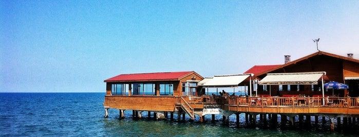 1967 Mıdı Restaurant is one of Yemede yanında yat....