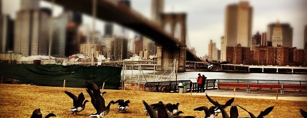 Brooklyn Bridge Park - Pier 1 is one of Park Highlights of NYC.