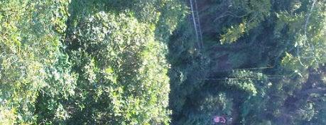 Camino de santa rosa a la cascada is one of Turismo en los alrededores de Xalapa.