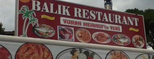 Yunan Mehmet'in Yeri is one of Orhan.