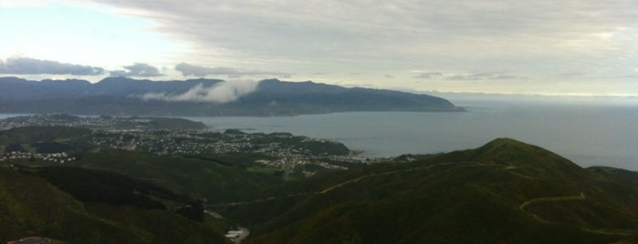 Wellington Wind Turbine is one of The coolest little capital in the world.
