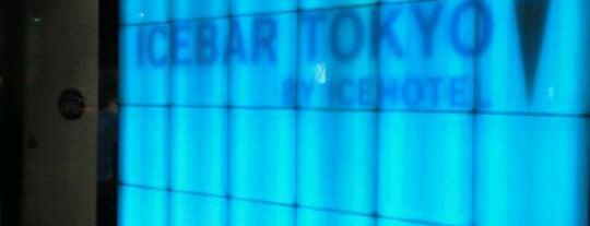 ICEBAR TOKYO is one of Themed Restaurants/Izakaya in Tokyo.