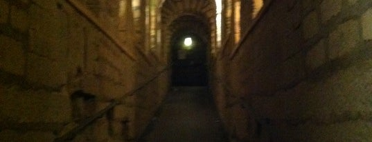 Catacombs of Paris is one of Best of World Edition part 3.