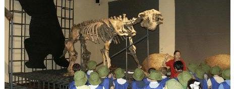 Museo Nacional de Ciencias Naturales is one of Disfruta con los peques.