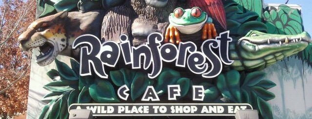 Rainforest Cafe is one of SARA! MICHELLE! TEXAS! All good things here...