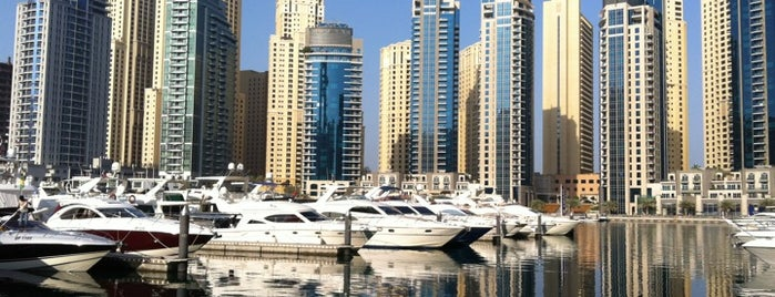 Dubai Marina Yacht Club is one of dubai.