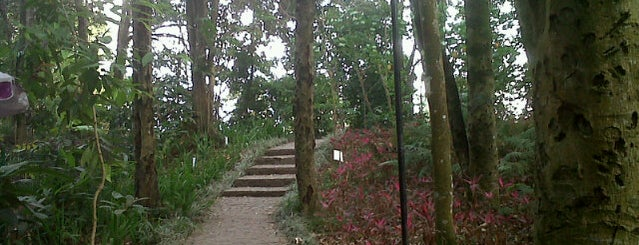 Taman Hutan Raya Ir. H. Djuanda is one of ----**mau**----.
