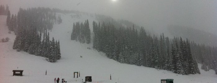 Top picks for Ski Areas