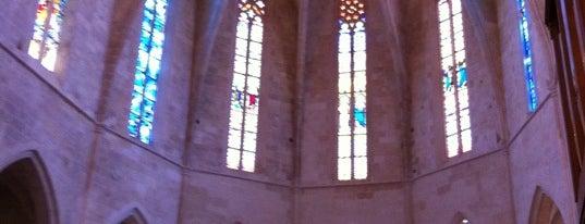 Ciutadella de Menorca Cathedral is one of Catedrales de España / Cathedrals of Spain.