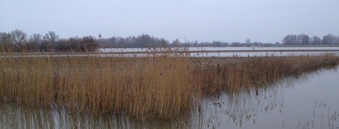 Aan de voet van de dijk in Afferden is one of Druten.