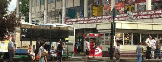 Автовокзал Сочи / Sochi Bus Station is one of Сочи @ chaluskin.ru.