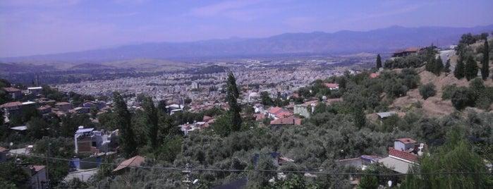 Tire is one of İzmir'in İlçeleri.