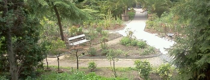 Botanická zahrada UK is one of Прага.
