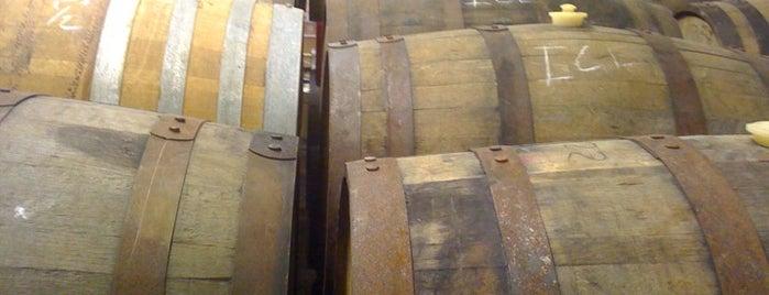 Jolly Pumpkin Artisan Ales, LLC - Dexter is one of Michigan Breweries.