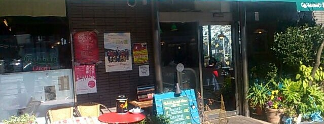 ペピタ・ライオン is one of SFG.