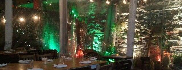 tree bistro is one of Manhattan Essentials.