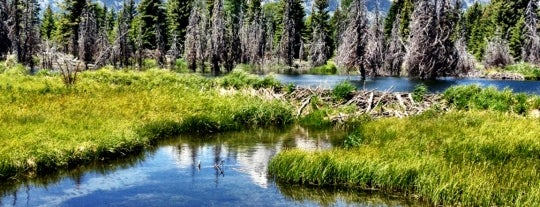 Grand-Teton-Nationalpark is one of Best Places to Check out in United States Pt 5.