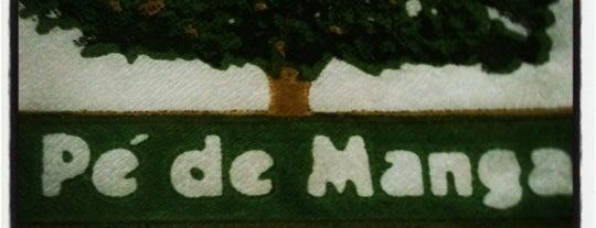 Pé de Manga is one of Lugares para ficar bebado em São Paulo.