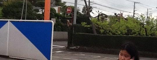 コイン洗車・コインランドリー きゃめる藤沢遠藤店 is one of コイン洗車場(横浜周辺).