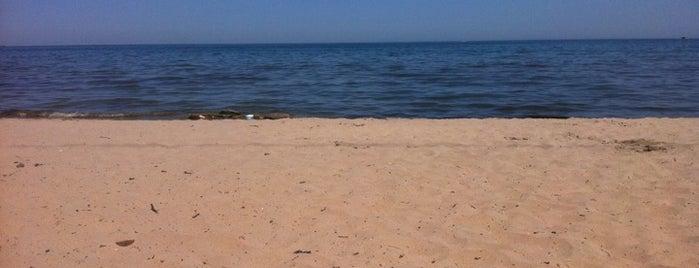 Burlington Beach is one of Oakville/Burlington to-do, eat and visit.