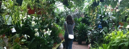 Gethsemane Garden Center is one of Where to go: Andersonville + Edgewater.