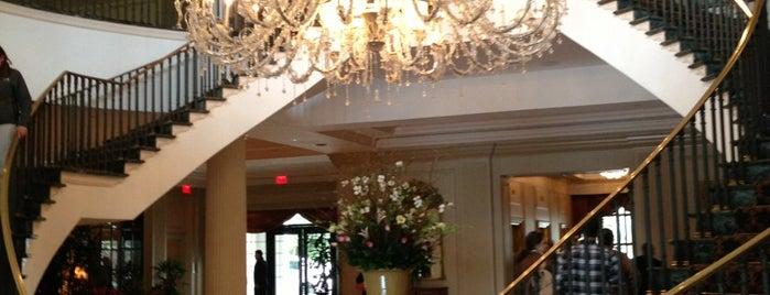 Best Dog Friendly Hotel In Charleston Sc