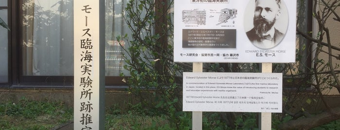 江ノ島臨海実験所