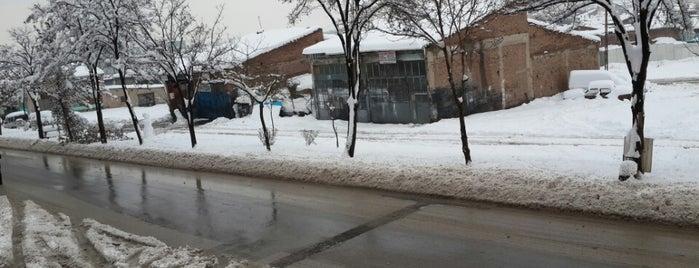 Sevinç Caddesi is one of Eskişehir'deki Caddeler.