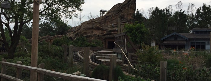 Big Grizzly Mountain Runaway Mine Cars is one of Hongkong.