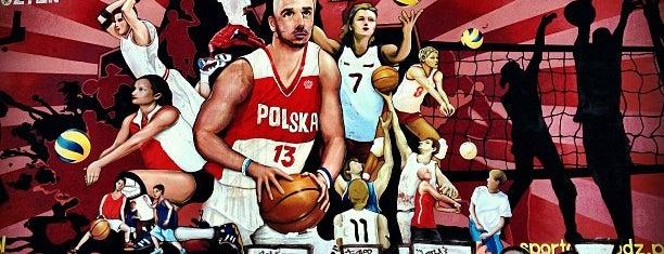 Mural Łódź Sportowa is one of Łódzkie Murale.