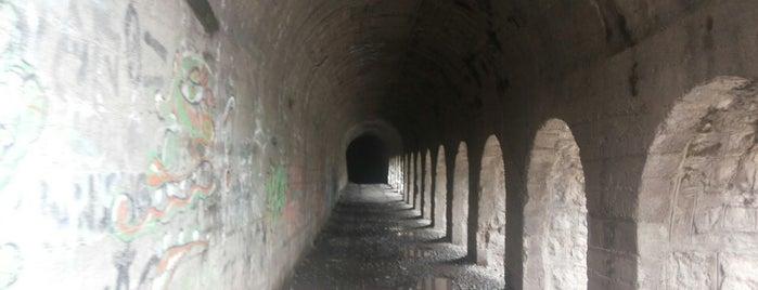 Tunel el tinoco is one of Chilecito 🗻.