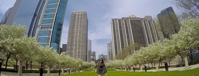 Maggie Daley Park is one of Chicago.