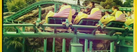 Flounder's Flying Fish Coaster is one of Disney.