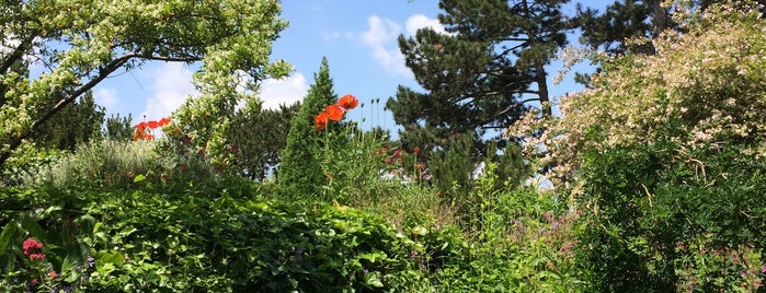 Japánkert | Japanese Garden is one of Budai hegység/Pilis.