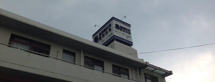 島脳神経外科整形外科医院 is one of mayor.
