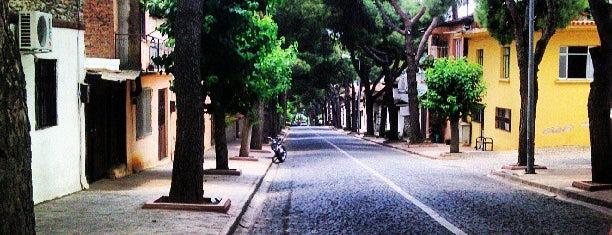 Birgi is one of İzmir.