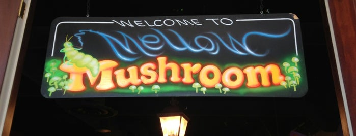 Mellow Mushroom is one of Top picks for Pizza Places.